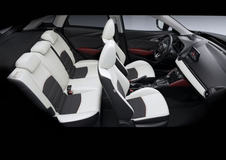 2017CX3_Geneva_Interior_white2_hires.jpg